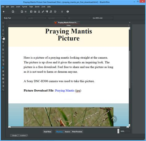 BlueGriffon Free Download Link - Free Web Editor for